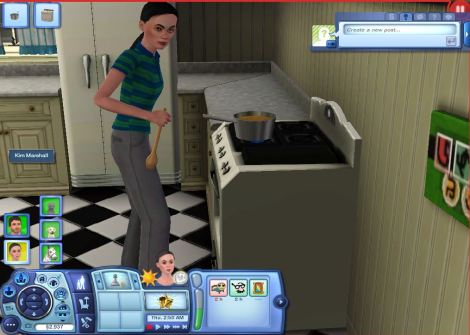 COOKING AS A SIM = SUICIDE